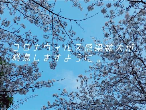 f:id:oak_4T:20200411185411j:image