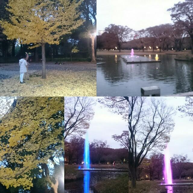 f:id:oatik11:20161124000806j:image