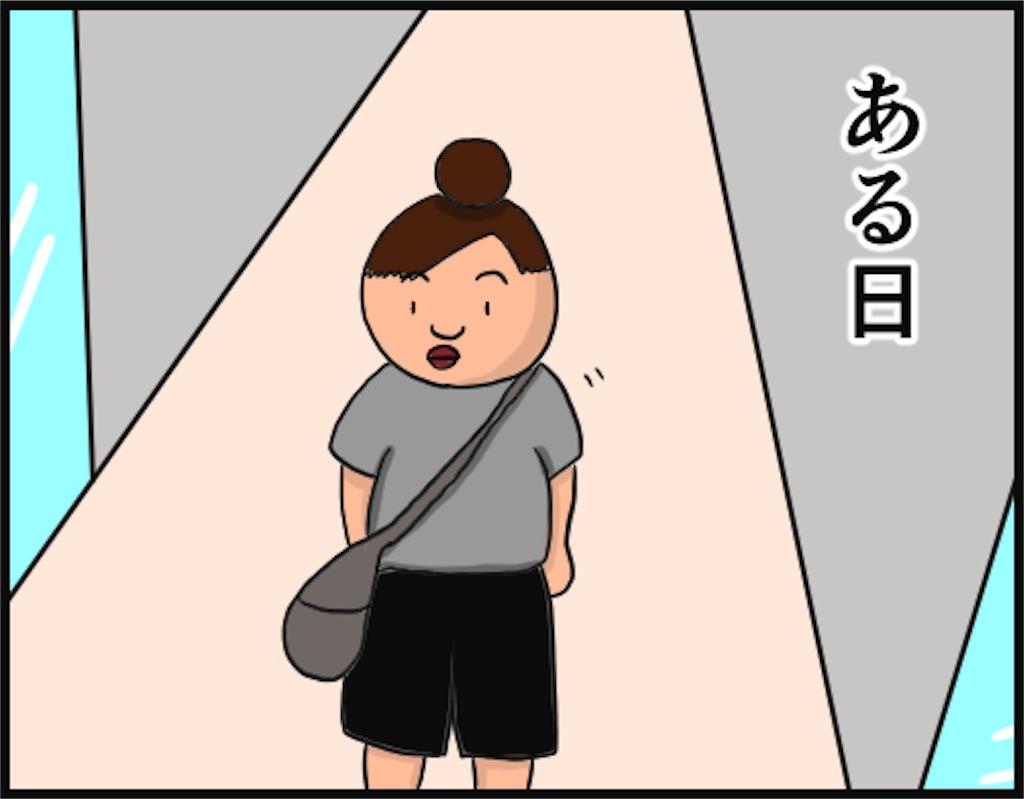 f:id:oba_kan:20180530140729j:image