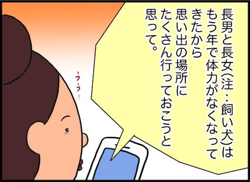 f:id:oba_kan:20191111000750j:image