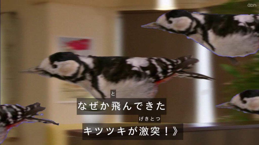 f:id:obaketarou00:20190711143400p:image