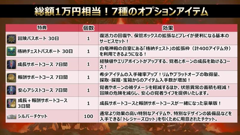 総額1万円相当!7種のオプションアイテム