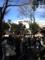 深川七福神巡り 富岡八幡宮から始めます。恵比寿さま