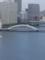 深川八幡祭 永代橋を遠望