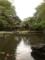靖国神社の神池です