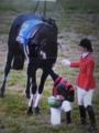 天皇皇后両陛下に跪き最敬礼する優勝騎手ミルコ