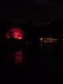 清澄庭園ライトアップ見に来た