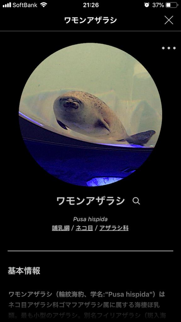 f:id:ocha-yumyum:20190126233246p:image