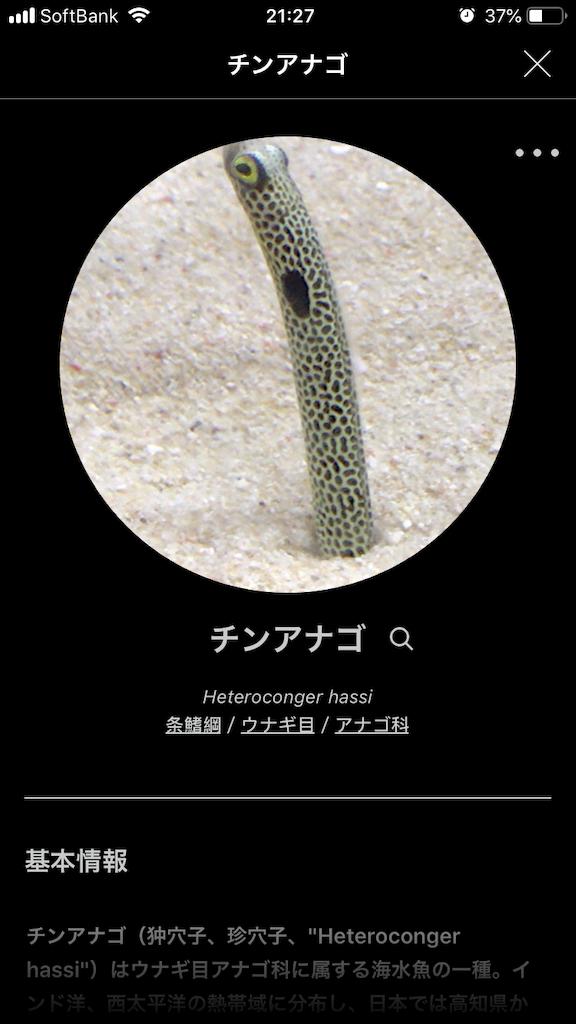 f:id:ocha-yumyum:20190126233319p:image