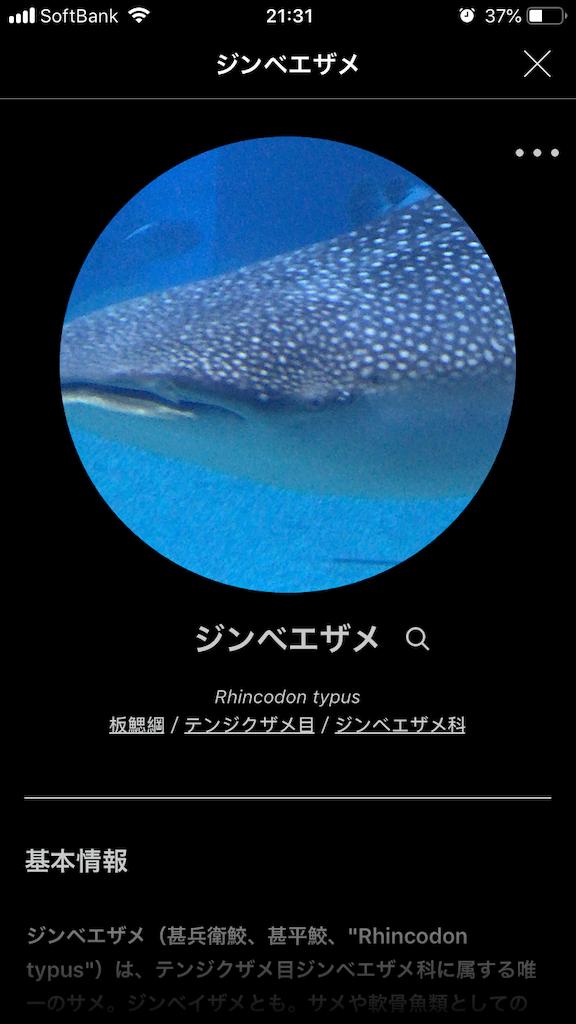 f:id:ocha-yumyum:20190126233330p:image