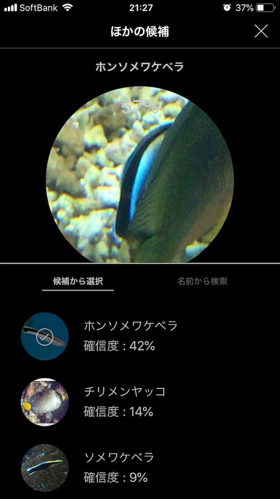 f:id:ocha-yumyum:20190126233438p:image