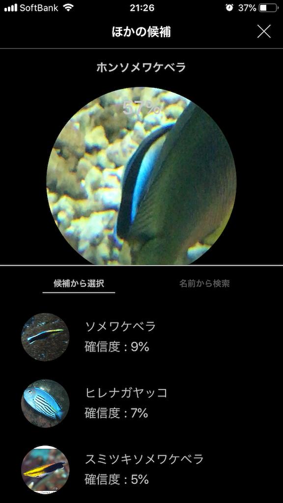 f:id:ocha-yumyum:20190126233448p:image