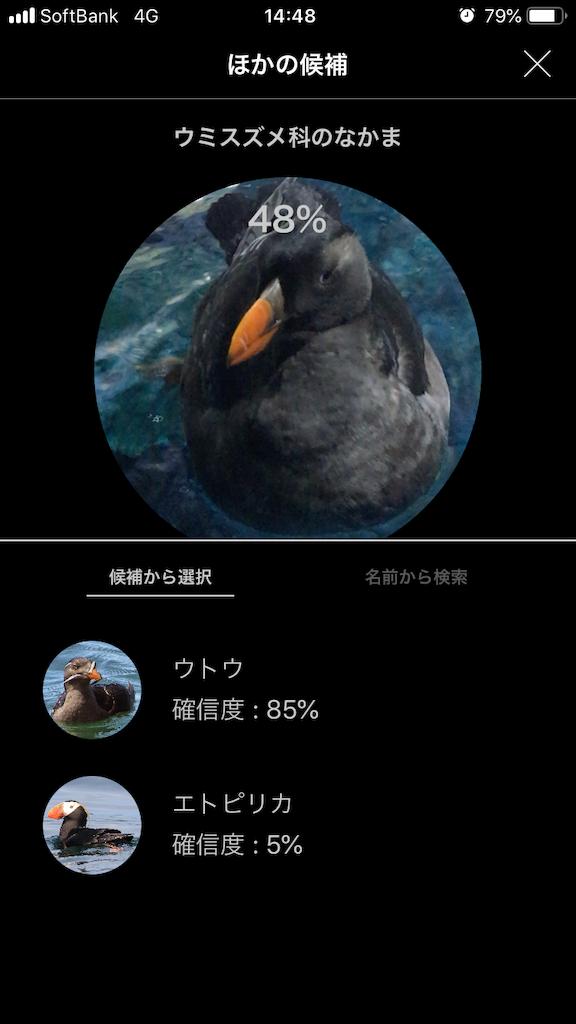 f:id:ocha-yumyum:20190126233527p:image