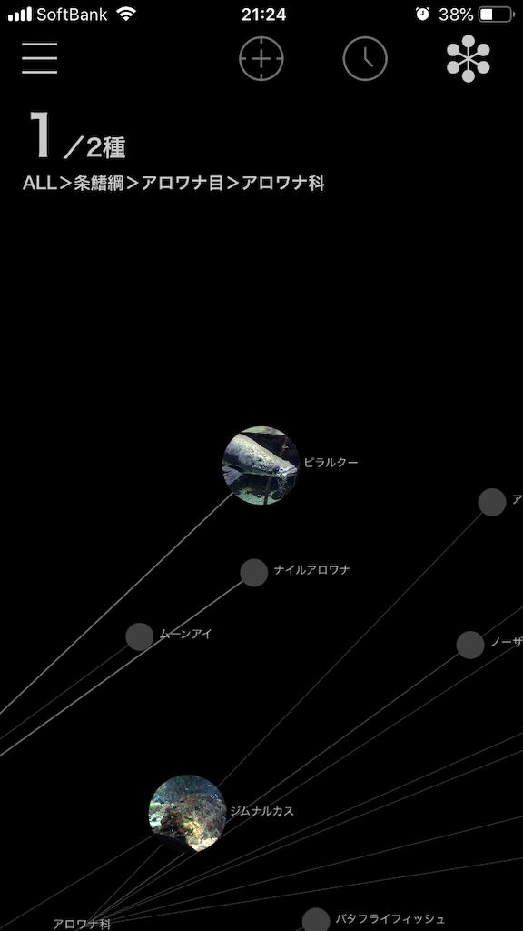 f:id:ocha-yumyum:20190126233904p:image