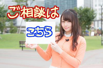 f:id:ochanokinawa:20170813131521j:plain