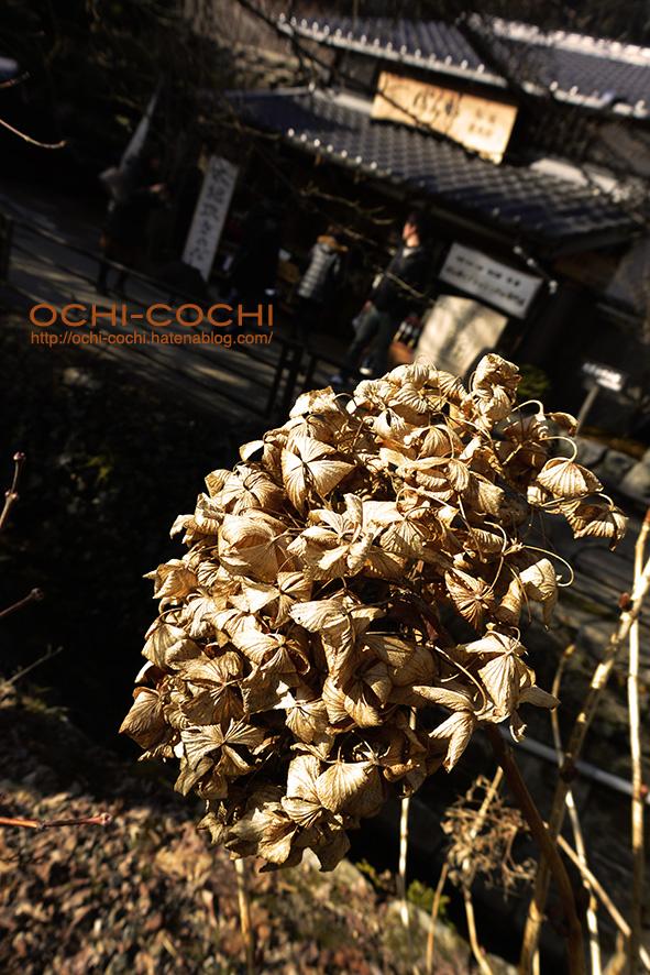 f:id:ochi_cochi:20180213025319j:plain