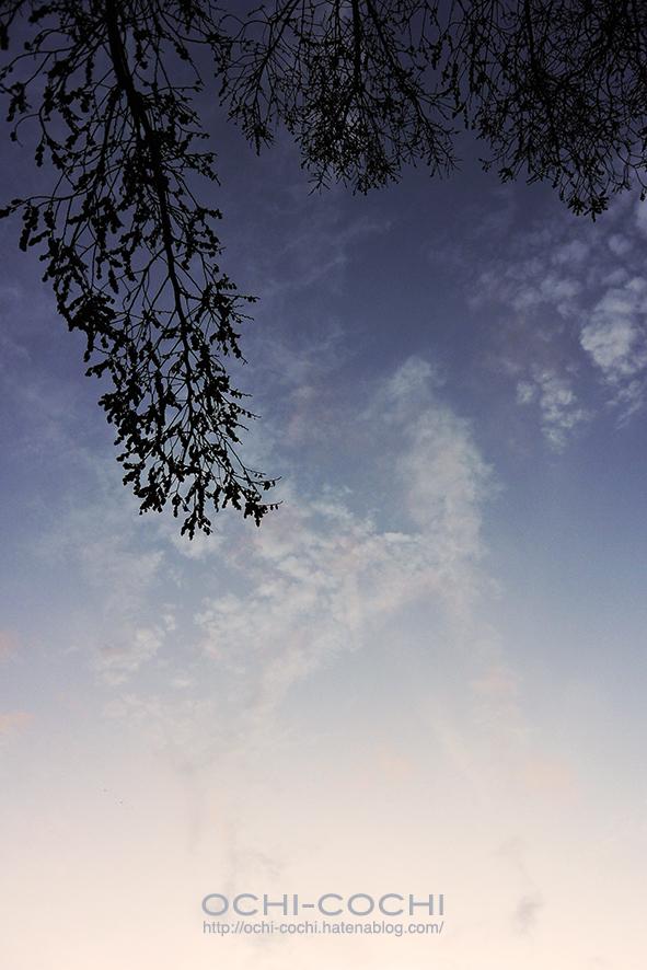 f:id:ochi_cochi:20181212084330j:plain