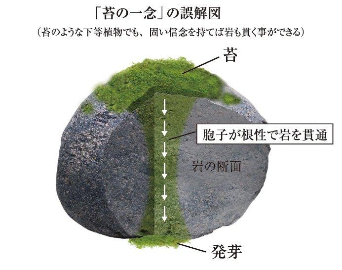 f:id:ochimusha01:20171231051016j:plain