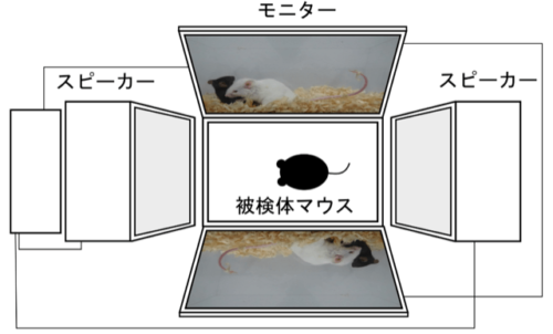 f:id:ochimusha01:20201220013744p:plain