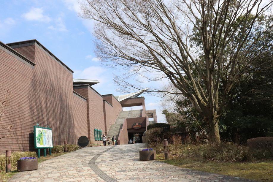 茨木自然博物館体験記感想