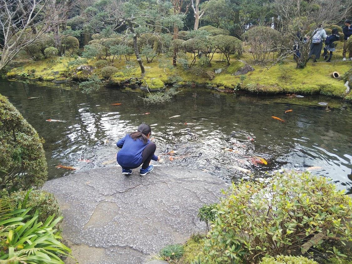 吉池旅館鯉池庭園