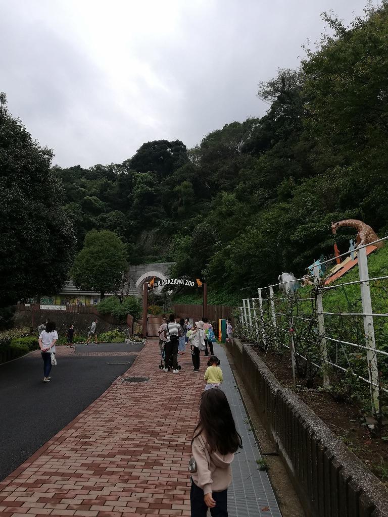 f:id:odango_kazoku:20200922163758j:plain