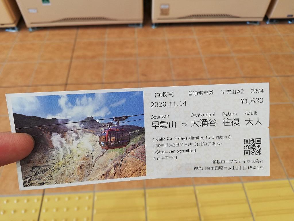 f:id:odango_kazoku:20201118205659j:plain