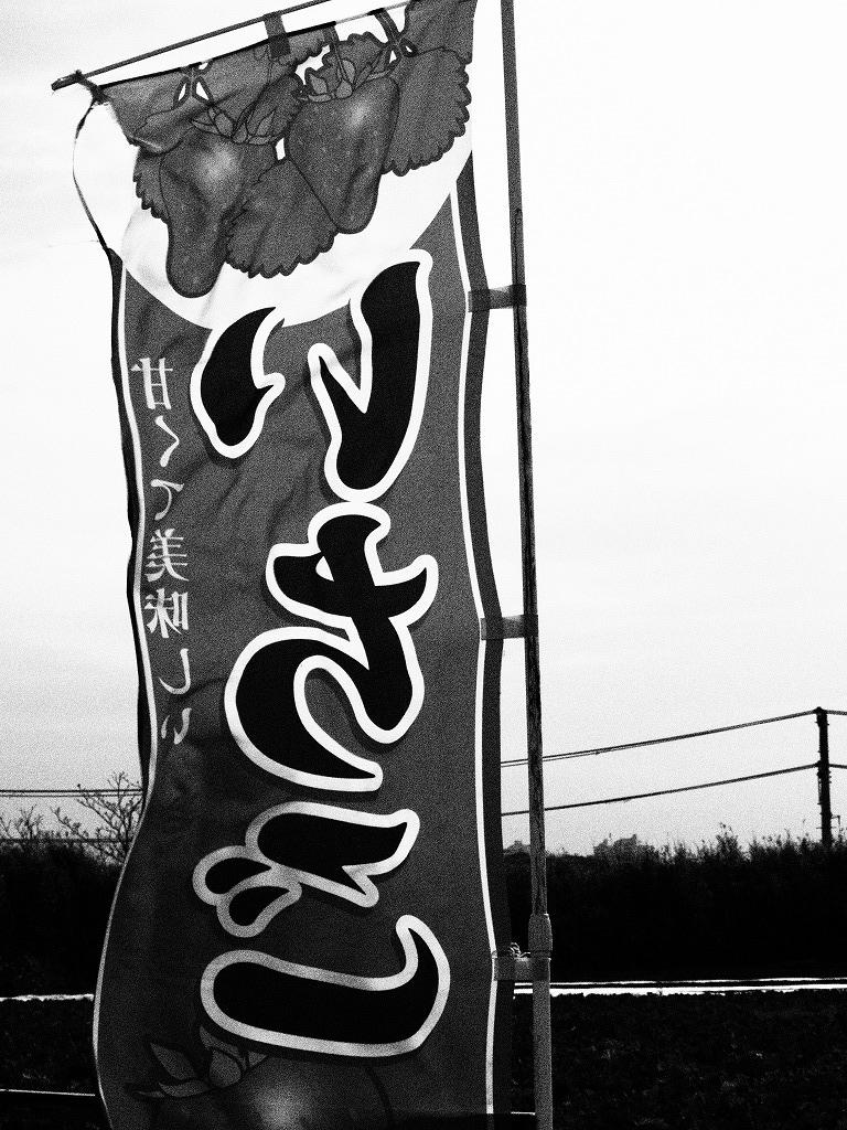 f:id:odango_kazoku:20210328165756j:plain