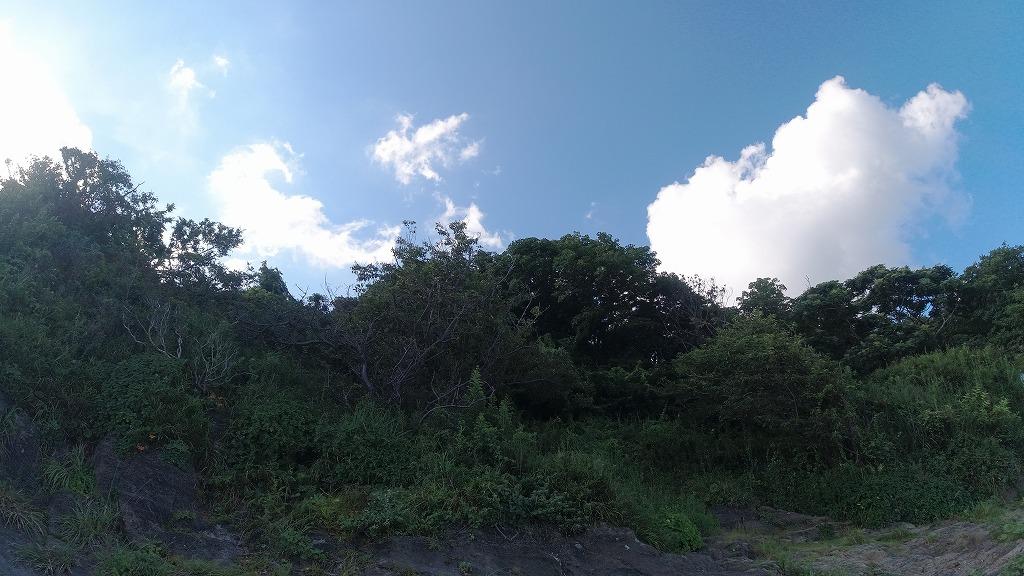 f:id:odango_kazoku:20210725165309j:plain