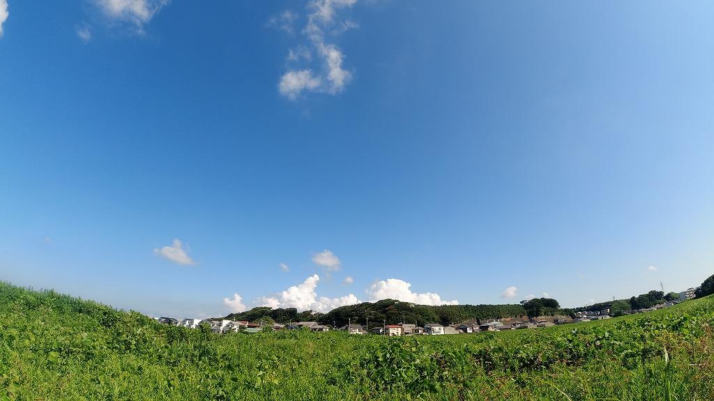 f:id:odango_kazoku:20210725165845j:plain