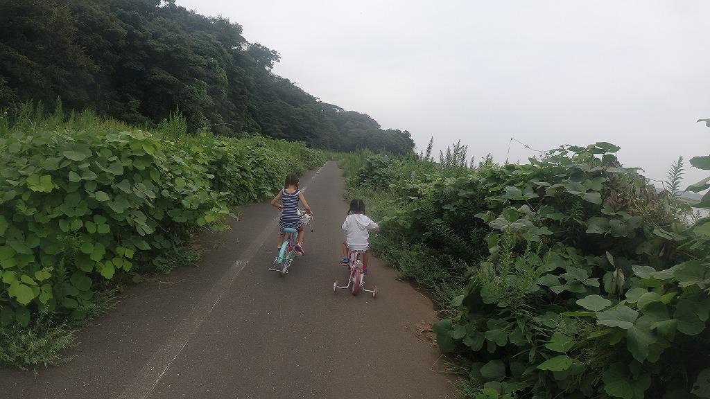 f:id:odango_kazoku:20210919160152j:plain
