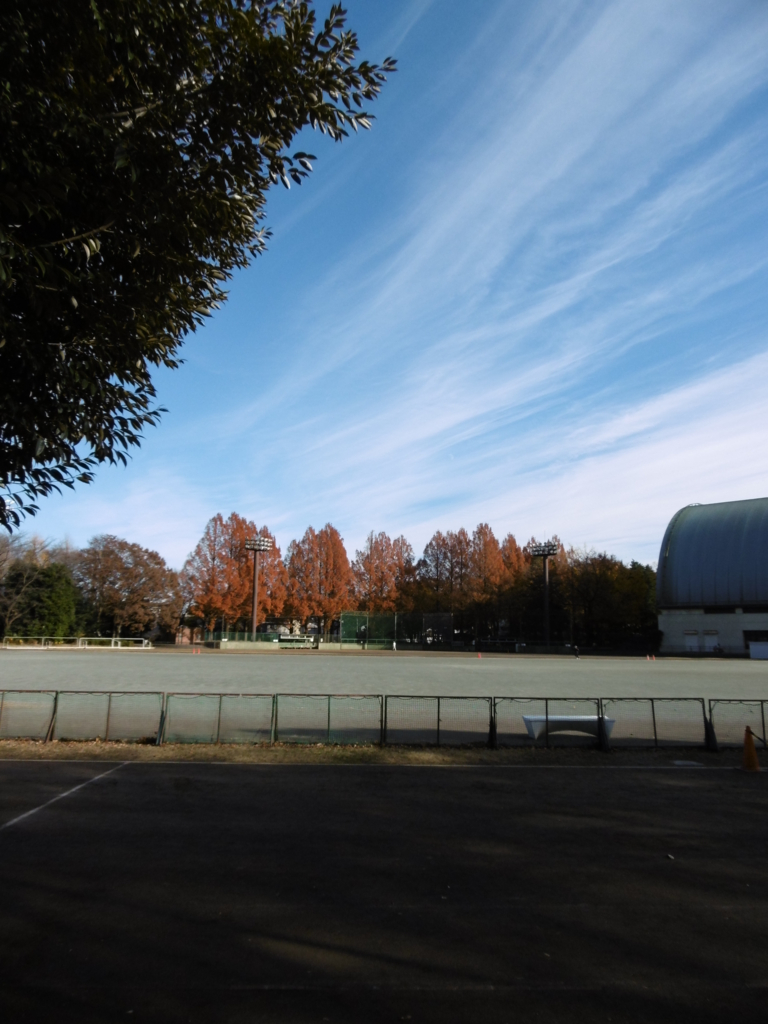 f:id:odangodesu:20161219082054j:plain
