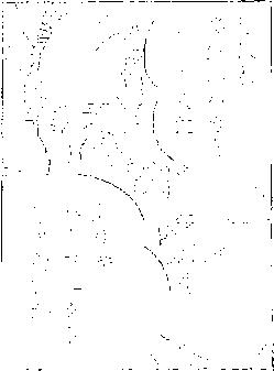 f:id:odbc:20170123153725p:plain