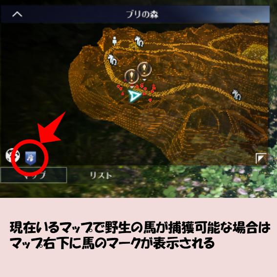 黒い砂漠MOBILE-馬捕獲可能マップ