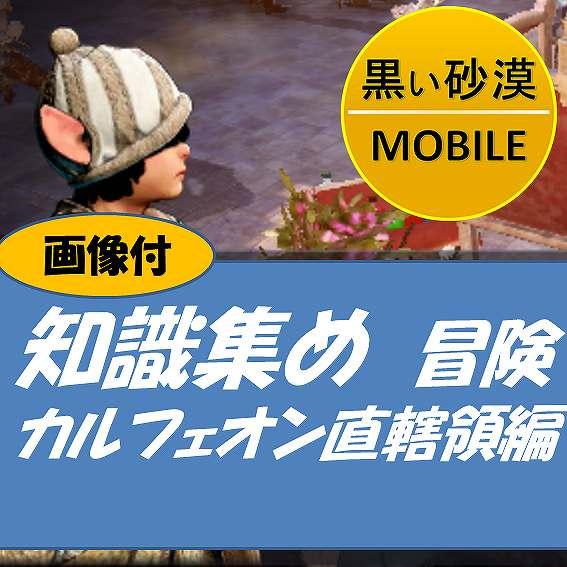 黒い砂漠MOBILE-知識集めー冒険ーカルフェオン直轄領編