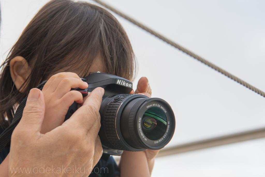 ニコン Nikon D5300