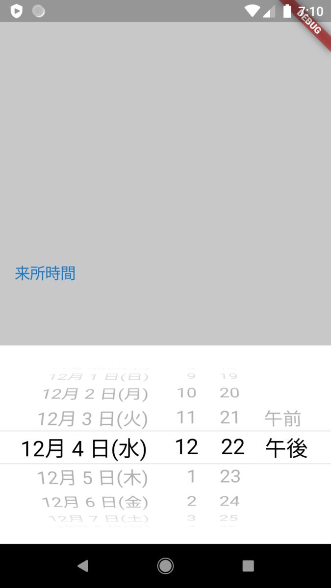 f:id:odekakeneko:20200113161105p:plain:w300