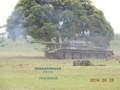 [74式戦車][自衛隊][陸上自衛隊][陸自][JGSDF][武山駐屯地][戦車][MBT][三菱重工業][日本製鋼所]74式戦車 その3 (仮想敵軍戦車)
