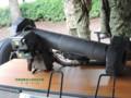 [自衛隊][陸上自衛隊][陸自][JGSDF][大宮駐屯地][JGSDF CAMP OMIYA][対戦車ミサイル][ANTI TANK MISSILE][軽MAT][ATM]01式軽対戦車誘導弾 ラット その1
