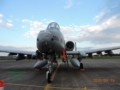 [A-10][アメリカ軍][アメリカ空軍][米軍][米空軍][USAF][U.S.AIR FORCE][攻撃機][ATTACK AIRCRAFT][横田基地]A-10C THUNDERBOLT2 その2