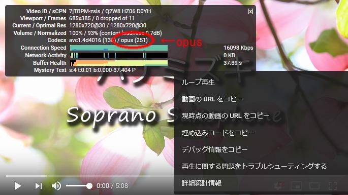Youtubeの詳細統計情報とコーデック「opus」