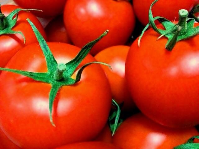 トマト ダイエット