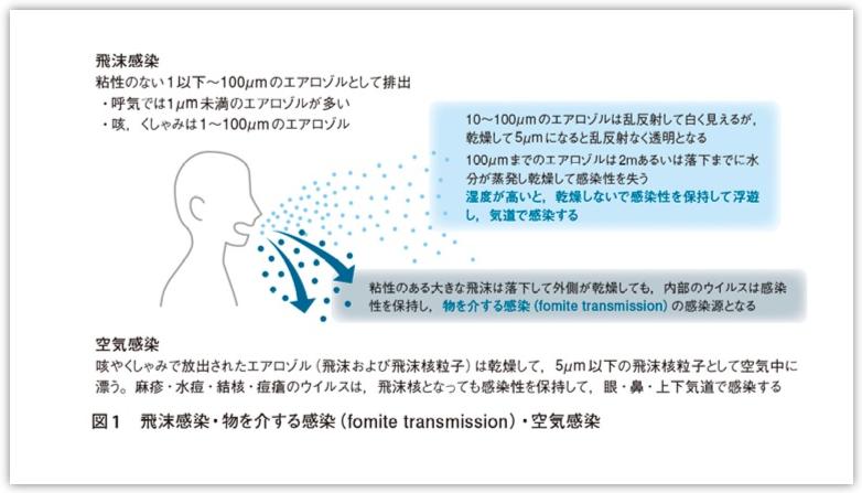 私の新型コロナウィルス対策(その1)|新おとな学 Ver.2 snias.com