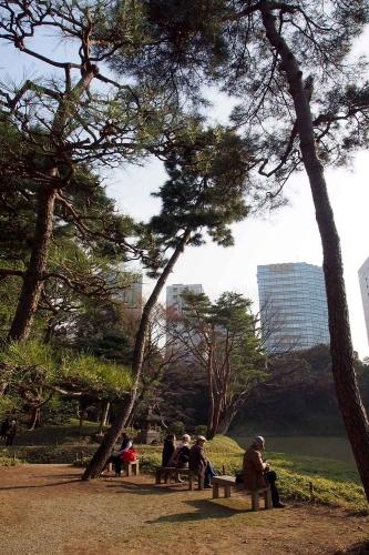 140226小石川後楽園8