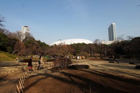140226小石川後楽園9