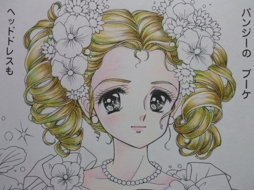 f:id:ofukusuke:20170515085224j:plain