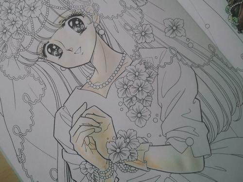 f:id:ofukusuke:20170528160350j:plain