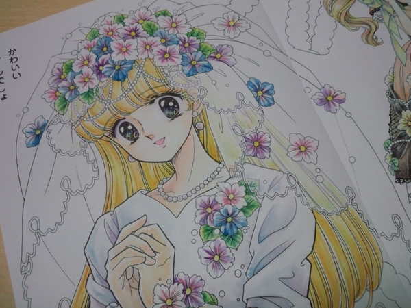 f:id:ofukusuke:20170529083147j:plain