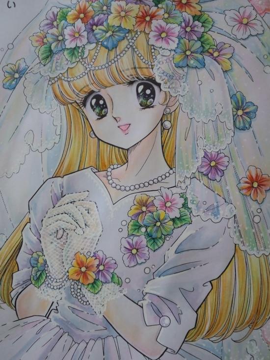 f:id:ofukusuke:20170530090321j:plain