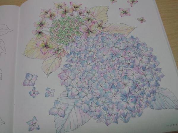 f:id:ofukusuke:20170706083549j:plain